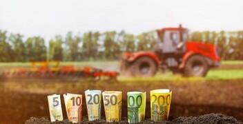 Între două extreme. Ce perspective au importatorii români din sectorul agricol în 2021?